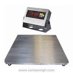 Standard Stainless Steel Floor Scale