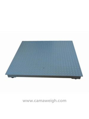 Standard Mild Steel Floor Scale