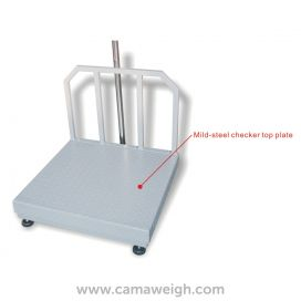Best Dealer For Standard Bench Scale with Backrail